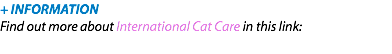+ INFORMATION Find out more about International Cat Care in this link: